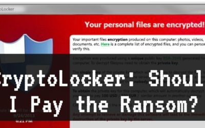 CryptoLocker: Should I Pay the Ransom?